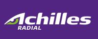 Легковые шины Achilles